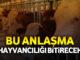 hayvancılık30.4.16